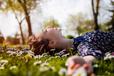 relax_grass_field