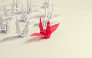 There are several white paper cranes following a bright red paper crane that is leading them with the help of a business coach.